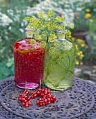 Redcurrant liqueur & herb oil with dill on table in open air