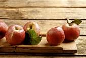 Äpfel der alte Sorte Ilzer Wienler auf Holzuntergrund