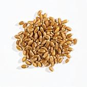 A heap of wheat