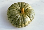 Pumpkin, Blue Hubbard variety
