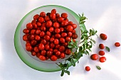 Cranberries with cranberry branch