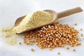 Corncobs and scoop of corn meal