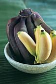 Gelbe und rote Bananen in einer Obstschale