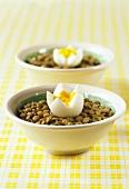 Lentils with hard-boiled egg