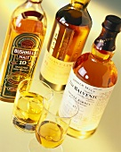 Various types of whiskey in bottles and glasses