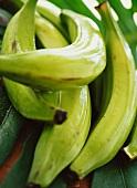 Plantains (cooking bananas)