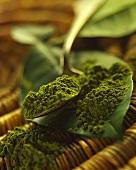 Still life with green tea powder (Matcha tea)