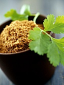 Ground coriander in bowl and coriander leaves