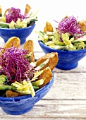 Vegetable salad with crisps and shredded red cabbage