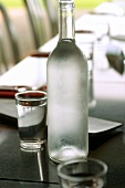 Water in bottle and glasses on dining table