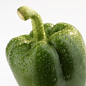 Green pepper with drops of water