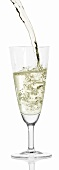Sparkling wine (Prosecco) being poured into glass