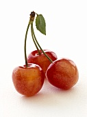 Cherries with stalk and leaf
