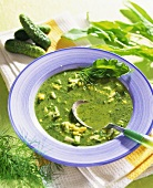Cold sorrel soup with gherkins and egg