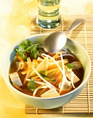 Vegetable soup with tofu and coriander