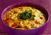 Dal pinni (lentil dish with chick peas and spinach, India)