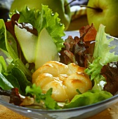 Salad leaves with baked apple