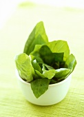 Basil leaves in small bowl