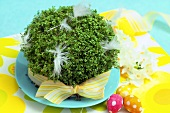 Cress Easter decorations for children
