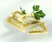 Pasta envelopes (Maultaschen)