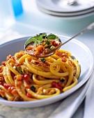 Macaroni with mince and vegetable sauce