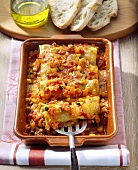 Cannelloni with vegetable sauce in baking dish