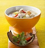 Chicken soup with coconut milk (Thailand)
