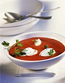 Pepper soup with soft cheese dumplings
