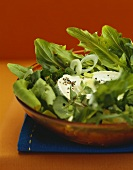 Mixed salad leaves with fresh sheep's cheese
