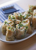 Spring Rolls with Vegetable Stuffing