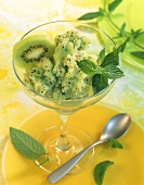 Kiwi fruit sorbet with green tea and fresh mint
