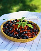 Berry tart on table in open air
