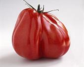 A beefsteak tomato (ox heart tomato)
