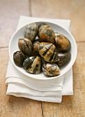 Fresh clams in white bowl