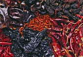 Several types of dried chilis