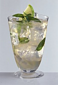 Moscow mule in long drink glass garnished with mint