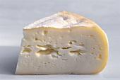 A piece of Saint-Albray cheese