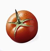 A Single Spritzed Tomato