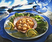 Scallop au gratin on spinach (Brittany)
