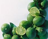 Whole and Half Limes; Border
