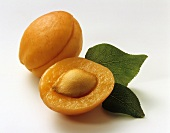 One half and one whole apricot with leaves