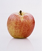 One Idared apple