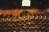 Alte Weinflaschen der Sorte Muscat lagern im Keller, Elsass
