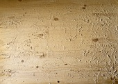 Floured board (filling the picture)