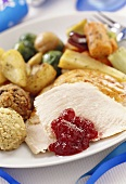 Turkey slices with cranberries & various accompaniments