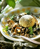 Fresh forest mushrooms with bread dumpling