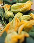 Courgette flowers, open and closed