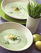 Cress soup with boiled egg