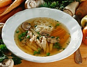 Hungarian chicken soup with thread noodles