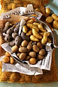 Early potatoes from France and Germany